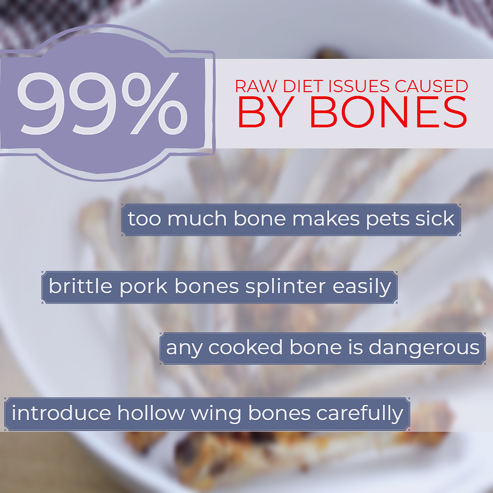 99% of raw diet issues are caused by bones; too much bone makes pets sick, brittle pork bones splinter easy, any cooked bone is dangerous, and hollow wing bones must be introduced carefully.
