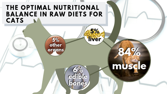 The optimal nutritional balance of raw diets for cats