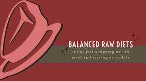 Balance raw diets are not just about chopping meat up on a plate