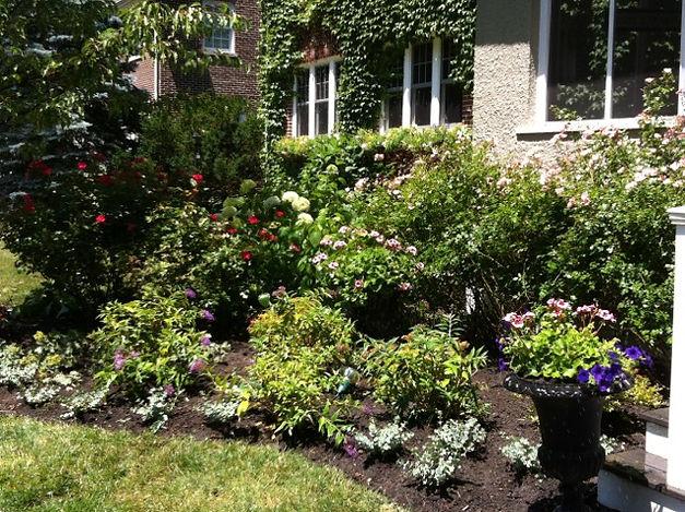 sustainable garden consultations in Evanston Illinois