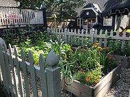 vegetable garden in Evanston, Illinois