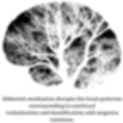 Gibberish-meditation-disrupts-the-brain-