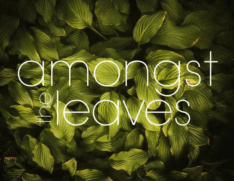 Amongst the Leaves.jpg