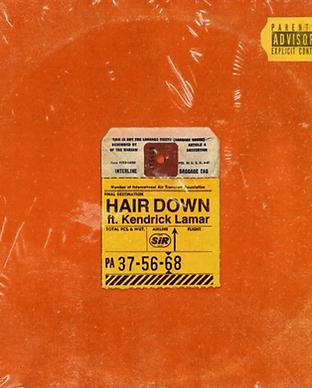 SiR - Hair Down.png
