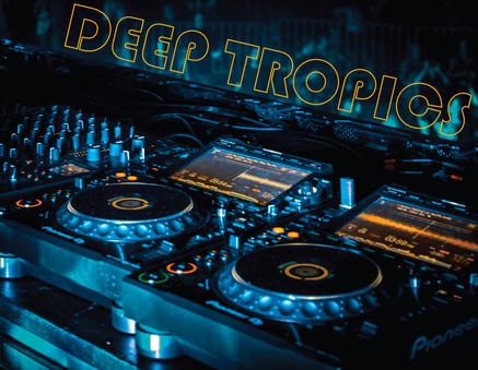 Deep Tropics Nashville   A Recap