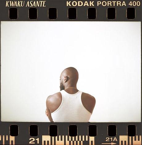 Kwake Asante - Primrose.jpg