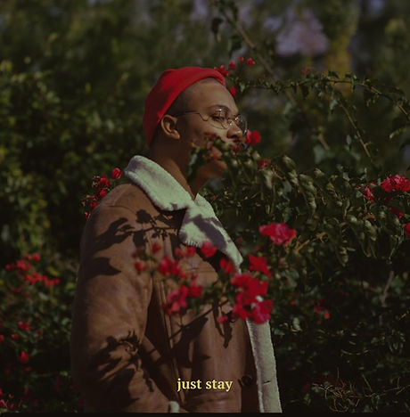 mcclenney - just stay.jpg