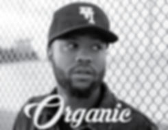 Casey Veggies - Organic-01.jpg