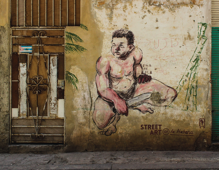 The Street Art of Havana-01.png