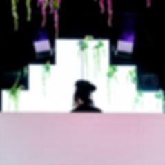 Cashmere Cat _ Deep Tropics 2-2.jpg