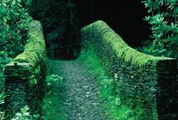 Exmoor stone bridge