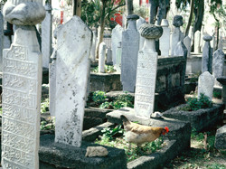 Graveyard- Rhodes, Greece
