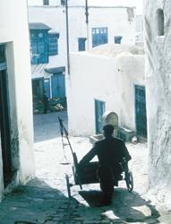 Vendor-Tunisia