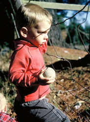 boy at wire fence