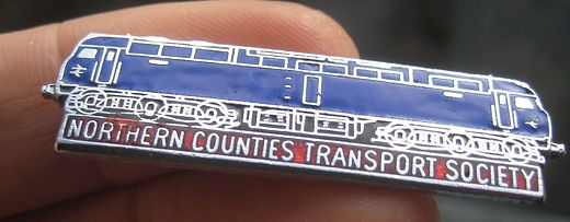 NCTS Badge.jpg