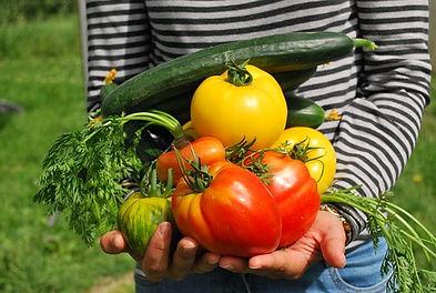 vegetables-742095__340.jpg