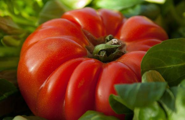 tomato-1331862_1920.jpg