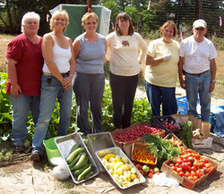 Harvest for the Food Bank...