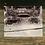 "Thumbnail: ""Holden at Grey Ledges"" by Todd Taylor 8 x 10 Photo Print"