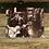 "Thumbnail: ""Ray Barbee on Guitar"" by Todd Taylor 8 x 10 Photo Print"