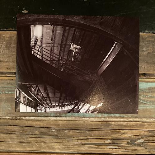 """John Kosch, Ollie"" by Todd Taylor 8 x 10 Photo Print"