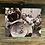 "Thumbnail: ""Mardi Gras"" by Todd Taylor 8 x 10 Photo Print"