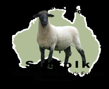 australia-header bigger.png