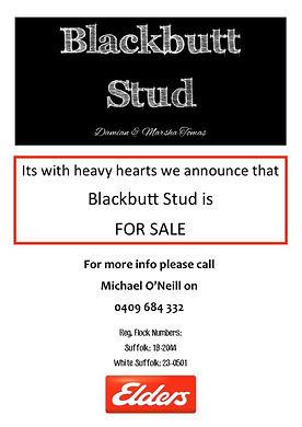 Blackbutt sale.jpg