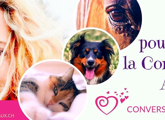 KIT DELUXE d'introduction à la communication avec les animaux