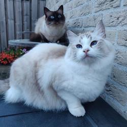 Hailey en Faylinn
