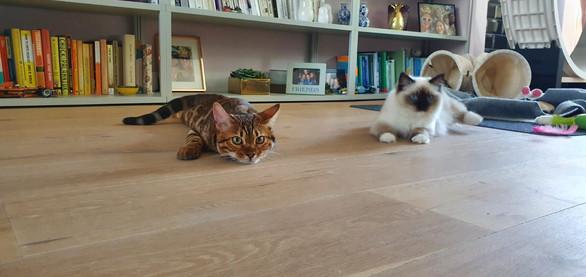 Penny & haar vriendin Julie