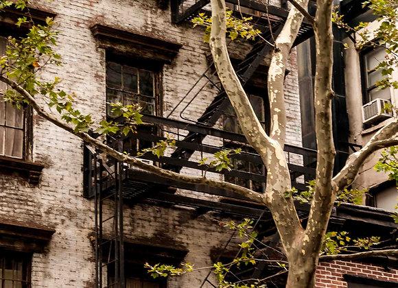 New York-12