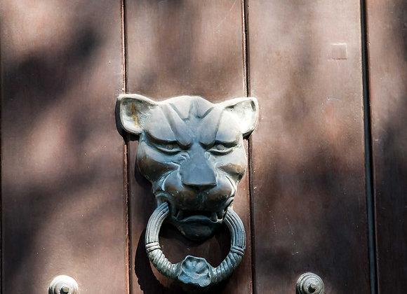 Porta-8