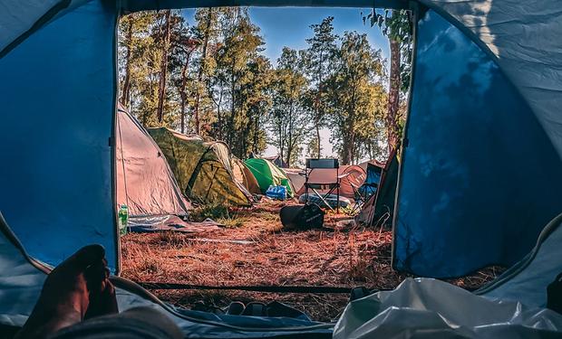 Festival-campsite-littering.png