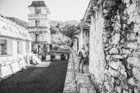 Ruins in Palenque, Mexico