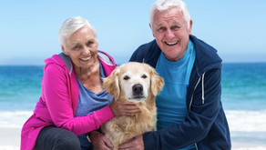 Seniors and Their Pets…Who's Saving Who?