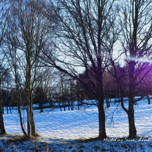 Midday Winter Sun