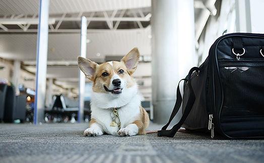 airport-feat.jpg