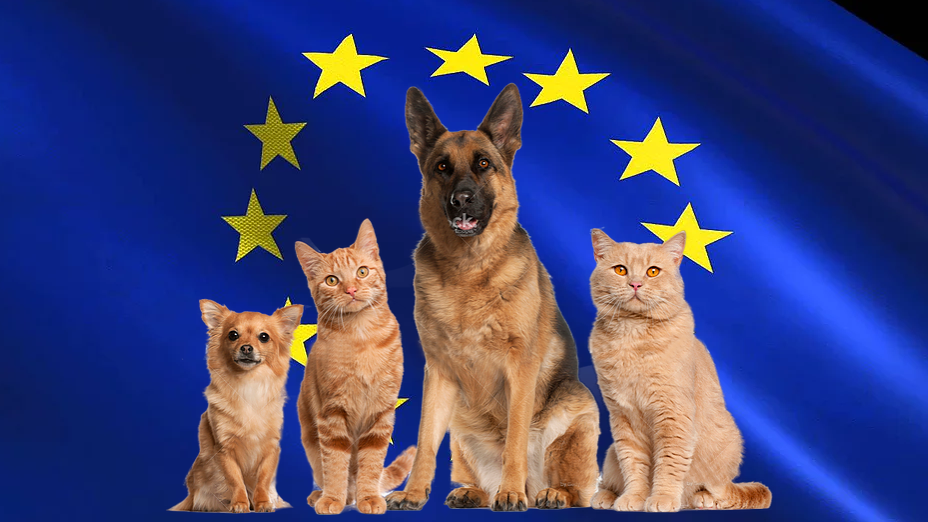Pet package from EU countries to Israel