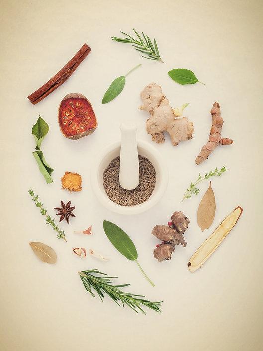 Soins naturels plantes phytothérapie aromathérapie gemmothérapie narbonne aude languedoc