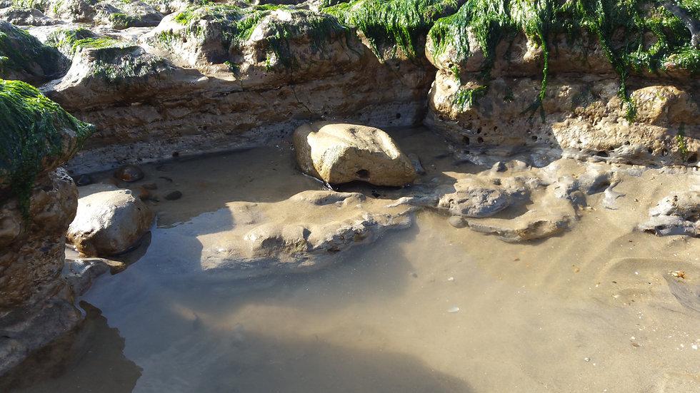 Rock pools on the beach 001.jpg