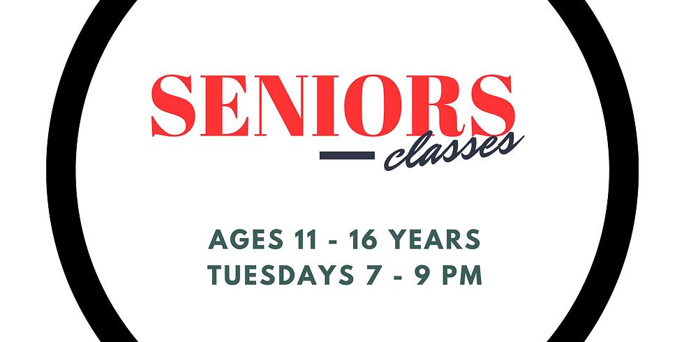 TYMT Seniors (Ages 11 - 16)  Summer Term