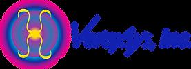 Veraxsys_logo_print.png