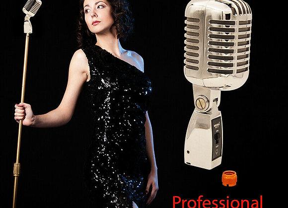 5 Core Pro Retro Vintage Style Vocal Microphone Classic Chrome Dynamic Stage Un