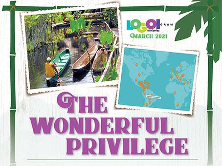 The Wonderful Privilege