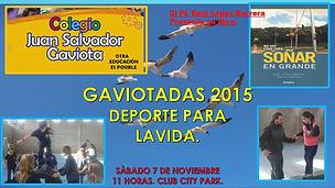 GAVIOTADAS 2015