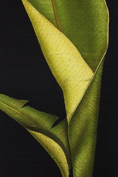 "Falls: ""Banana Leaf Solo"""