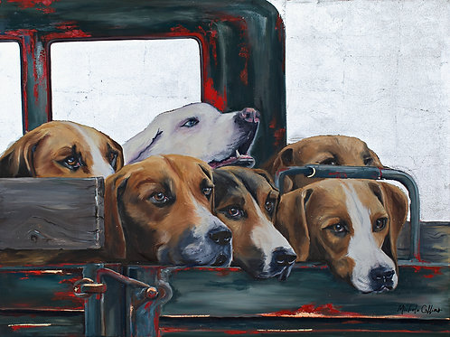 """Collins: """"Pickup Dogs"""""""
