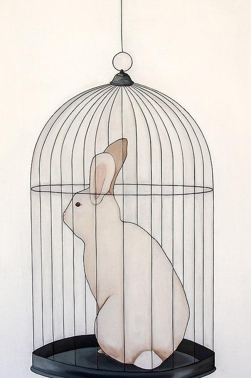 "Ladd: ""Rabbit"""