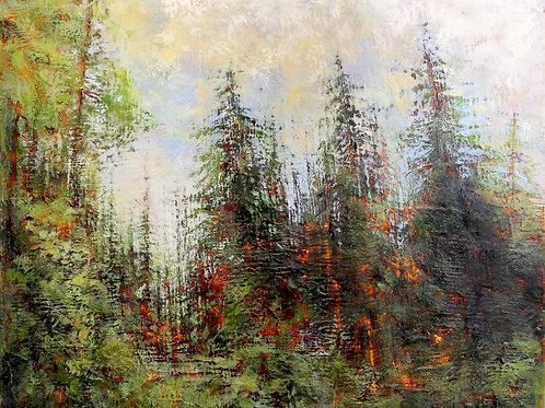 """Kirouac: """"Forest Walk"""""""